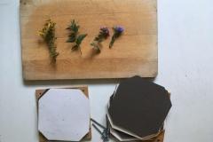 ...und in einer Blumenpresse oder zwischen Papier und dicken Büchern trocknen.
